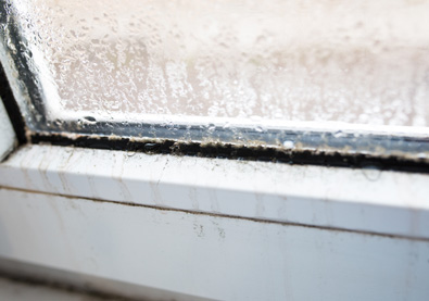Ventura, CA Window Contractor
